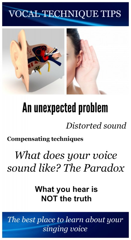 Pin-VTT-What does your voice sound like